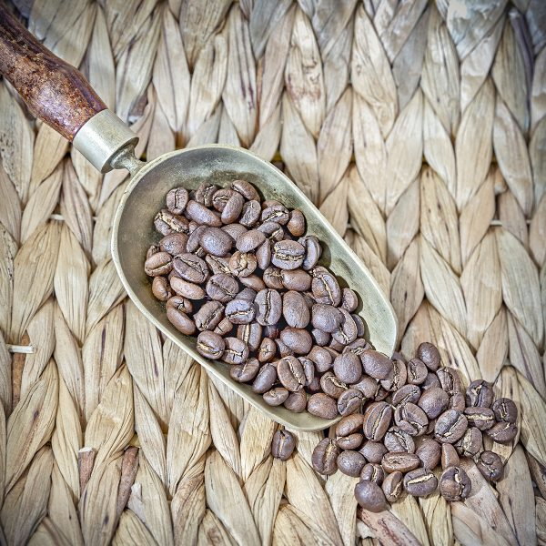 MardeCafé Rwanda Ingagi